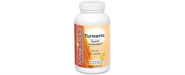 Botanic Choice Turmeric Review615